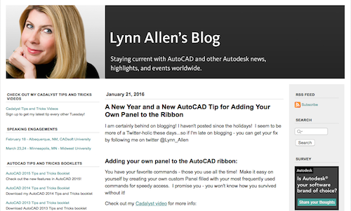 Lynn Allens Blog
